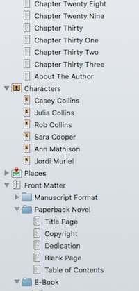 Scrivener Sections