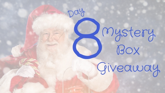 Day 8 – How To Cozy Up With A Good Romance Novel – Holiday Style